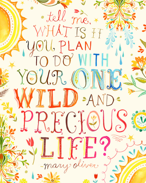Mary Oliver Love Quotes: A Blog Of One's Own: Poems For A Sunny Day: Mary Oliver