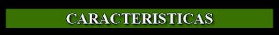 Diferentes características de GreenPanthera