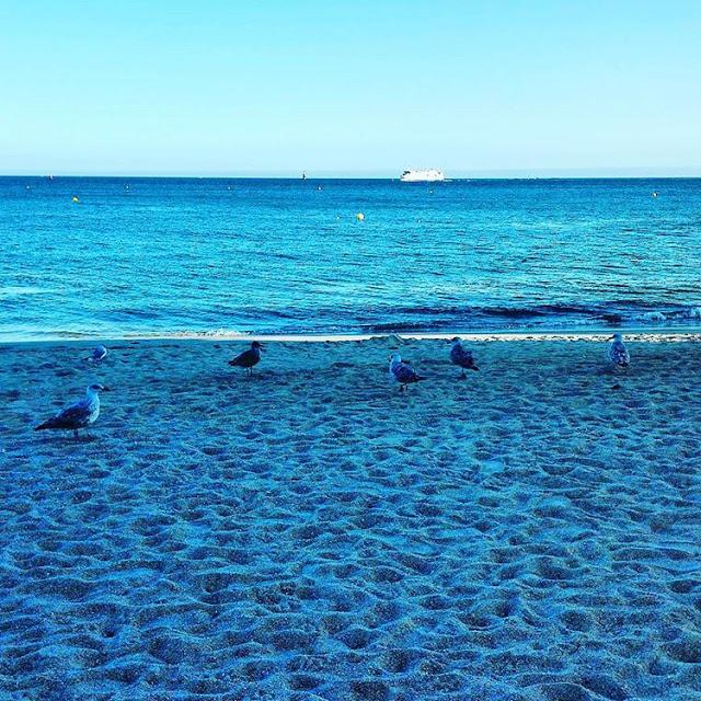 Pourquoi je préfère Quelques Activités & Loisirs sports nautiques sur Larmor Plage Pendant les vacances d'été, je Bretagne - France I Hopper Voyager