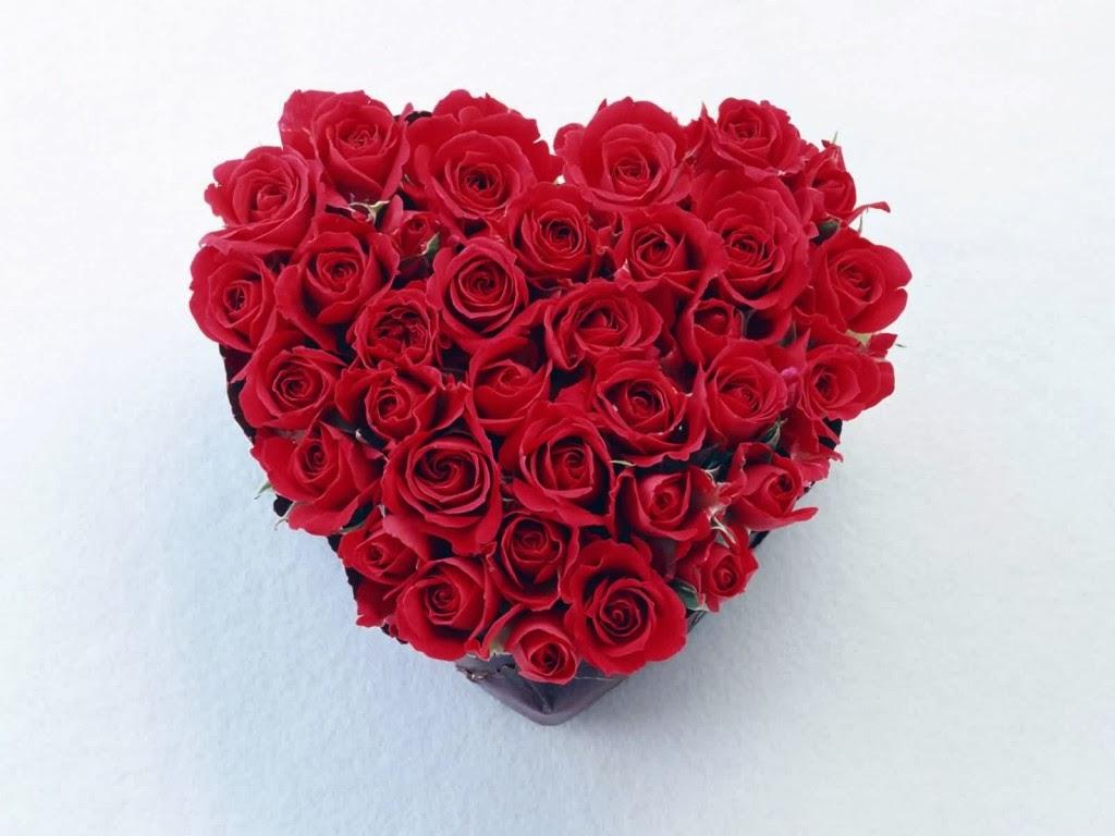 Blogues A La Plus Belle Des Fleurs Pour Vous A Ma Planete Pps