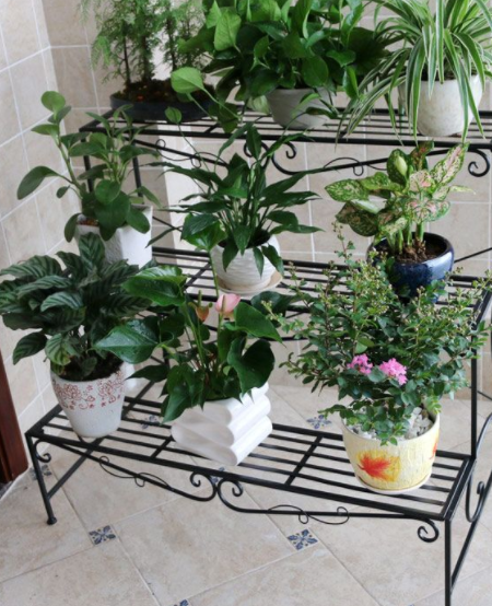 293+ Ide Desain Tempat Pot Bunga Dari Besi Kekinian