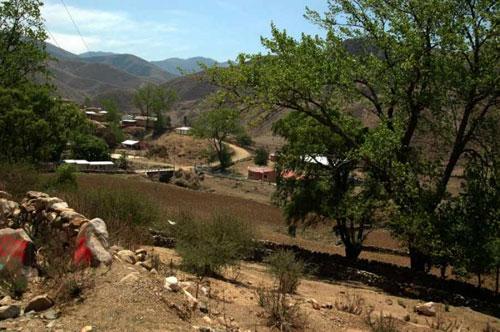 Tarija y Jujuy buscan abrir nueva frontera por Mecoya