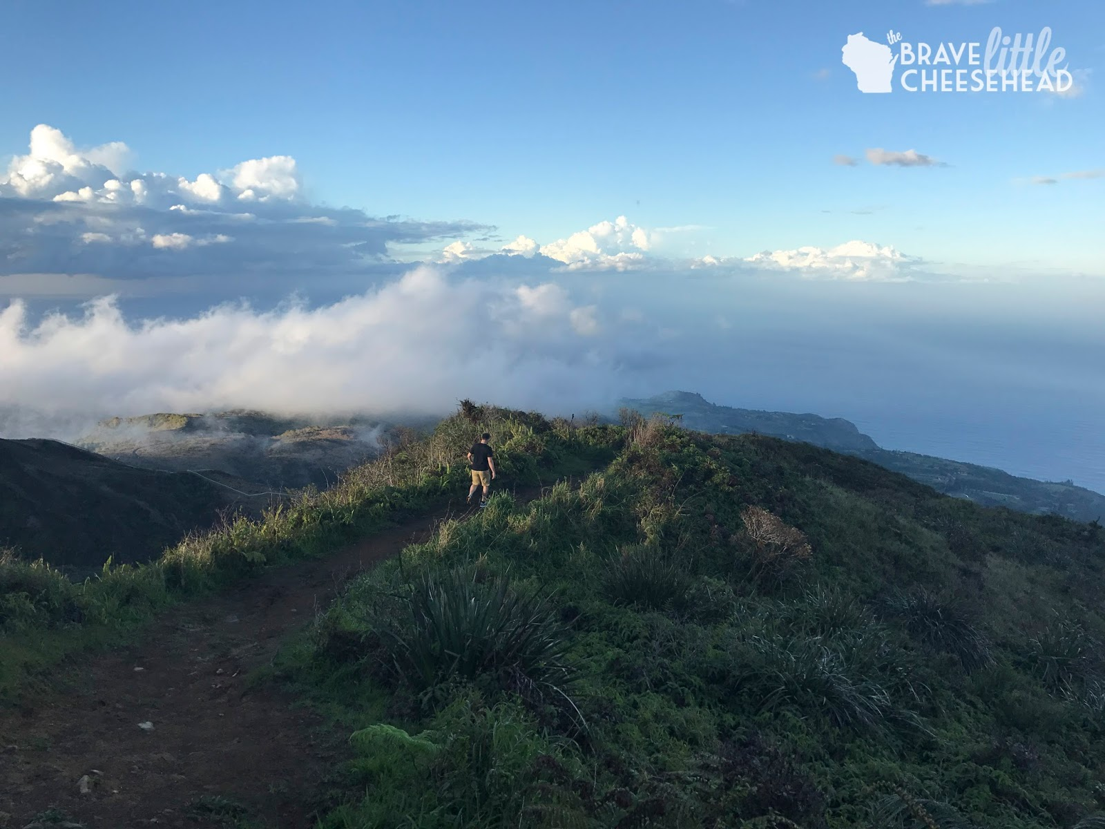 Hiking Maui and the Waihee Ridge Trail | The Brave Little Cheesehead at bravelittlecheesehead.com