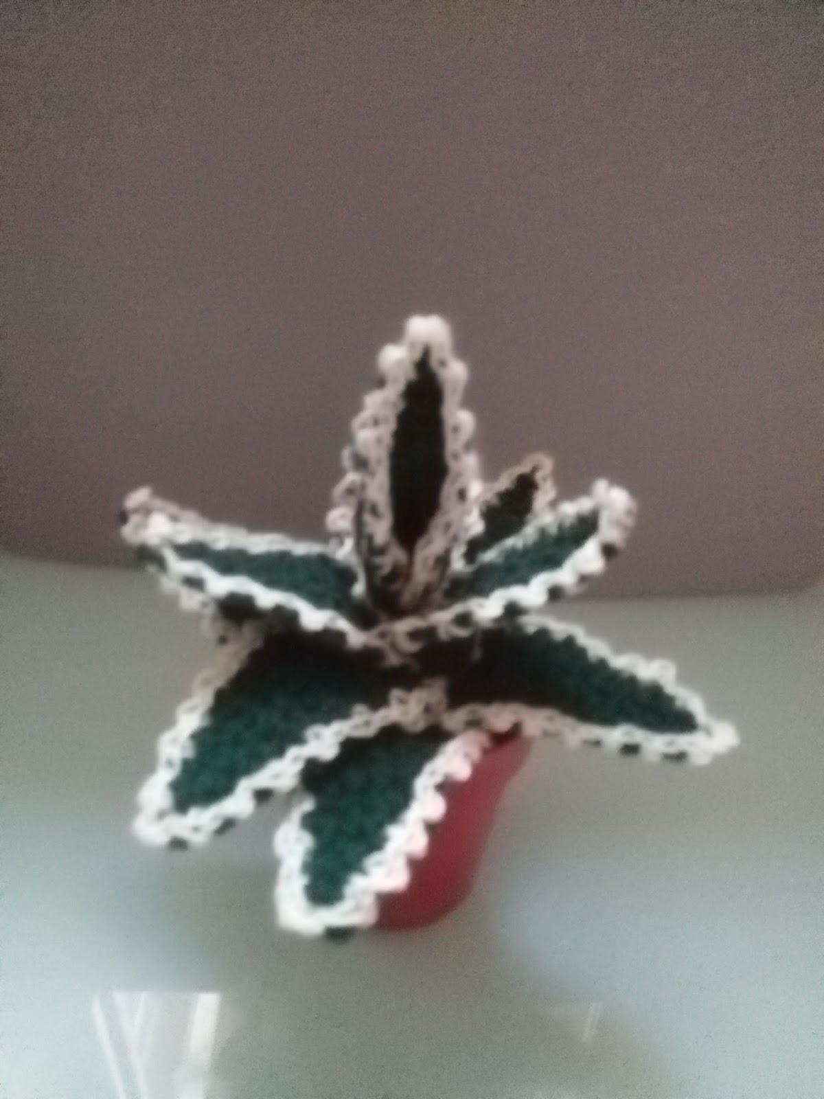 Cactus redondo tejido en crochet (amigurumi) - YouTube | 1600x1200