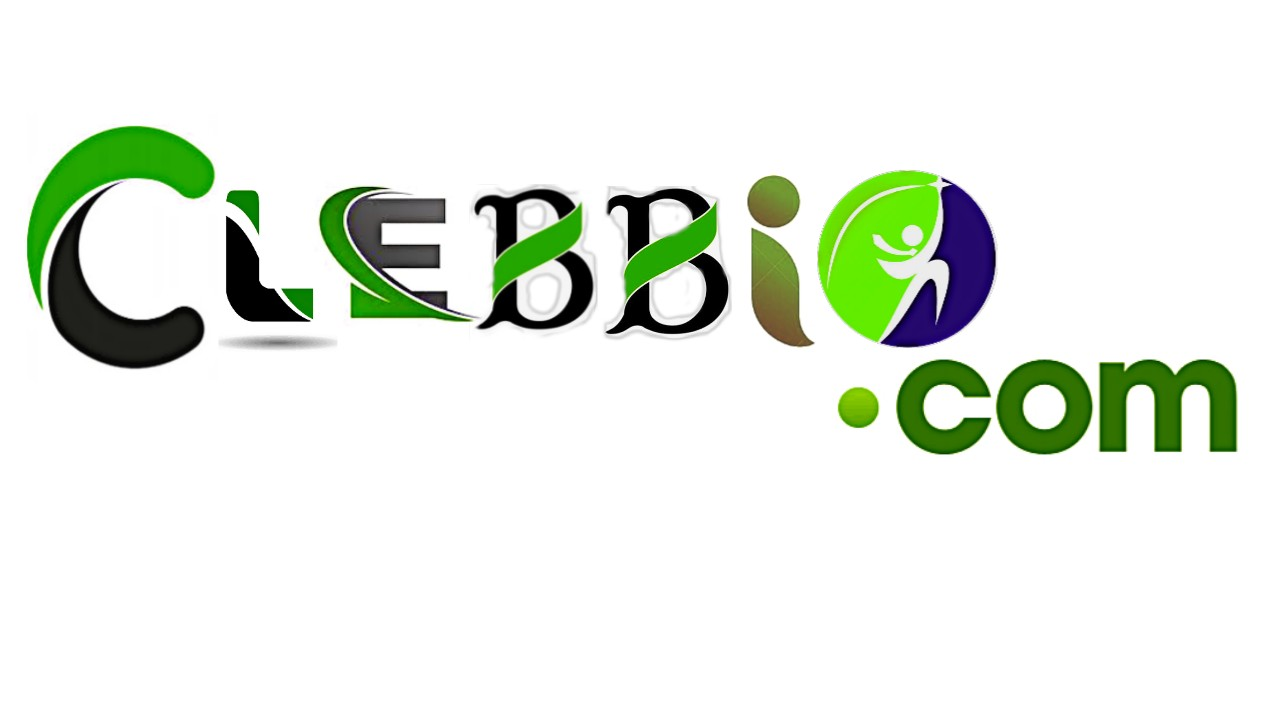 Clebbio: Government jobs in Pakistan 2021 Latest Govt Jobs Today