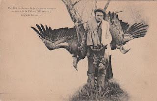 pays basque autrefois chasse