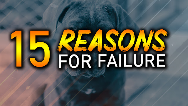 Reasons For Failure, Reasons For Failure in Life