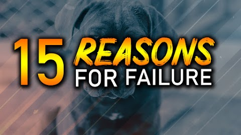 15 Reasons For Failure and How to Fix Them? - Evolution's Revolution
