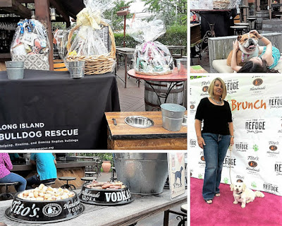 Great dog event at The Refuge restaurant on Long Island NY to benefit Bulldog Rescue.  Co-sponsored by Tito's Vodka. Pet friendly events, Dog friendly restaurants