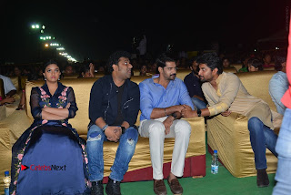 Nenu Local Audio Launch Stills  0182.JPG