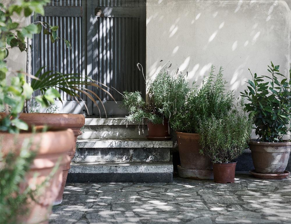 Rooma, kesä, kaupunki, valokuvaus, Visualaddict, Rome, photography, Frida Steiner, valokuvaaja, Rome, Villa Lante, behind the scenes, rappuset, ruukkupuutarha