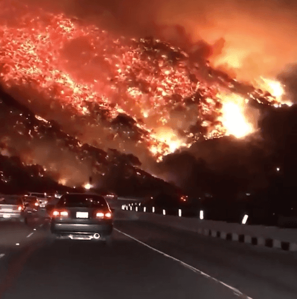Man Spotted on Side of Road as Fire Rages. Then Witness Sees Him Grab the Tiny Animal