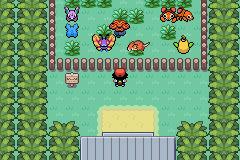 pokemon sunset orange screenshot 3