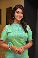 Pooja Jhaveri in Beautiful Green Dress at Kalamandir Foundation 7th anniversary Celebrations ~  Actress Galleries 084.JPG