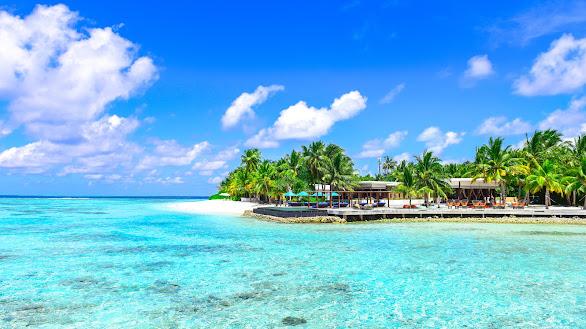 Photo of Seashore During Daytime