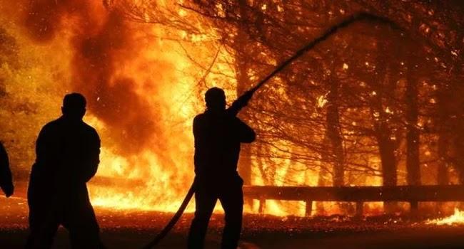"""""""Ειδικός"""" δασικών πυρκαγιών στο Spiegel: Στην Ελλάδα ο εμπρησμός είναι ευρέως διαδεδομένος"""