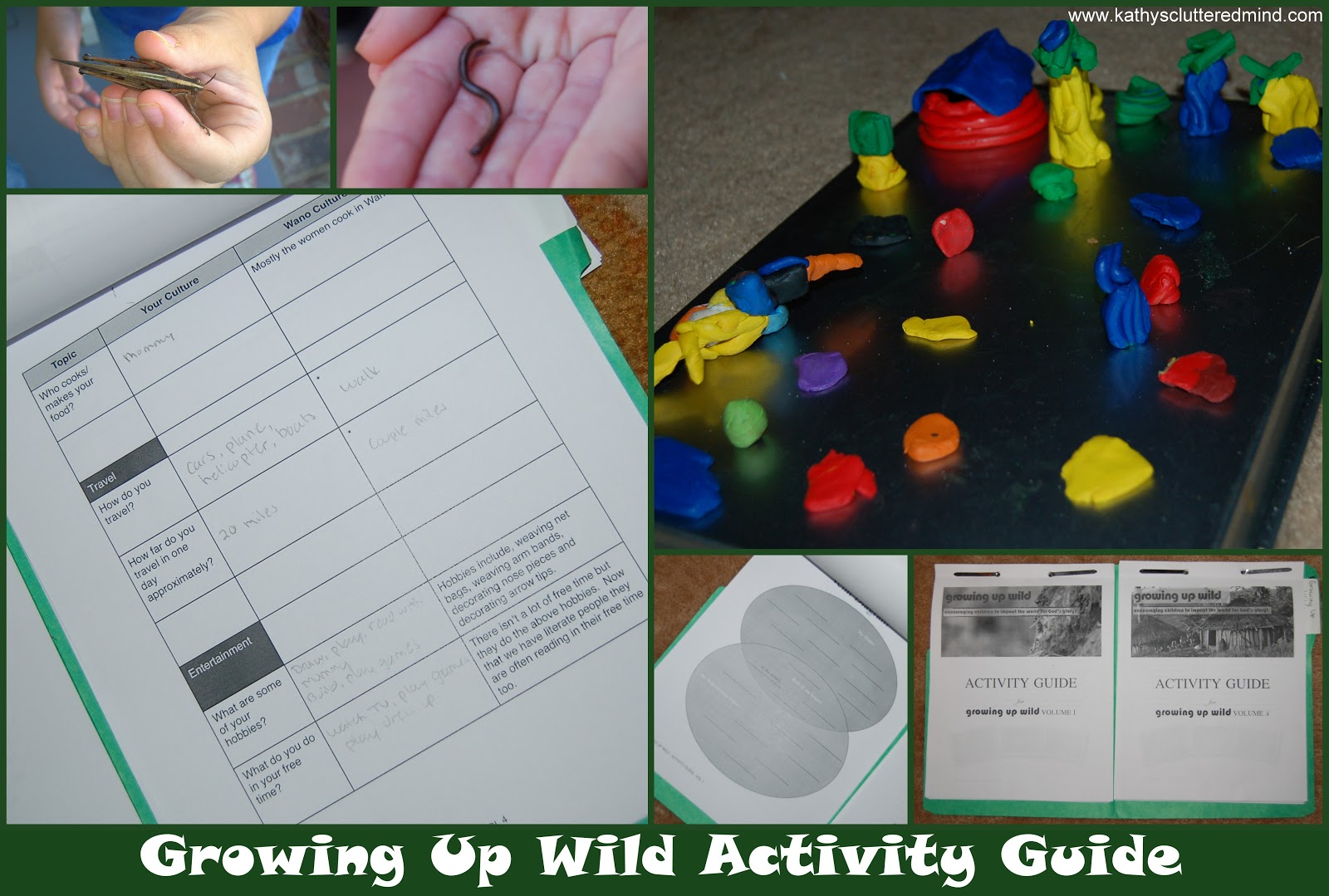 Kathys Cluttered Mind Growing Up Wild Dvd Review