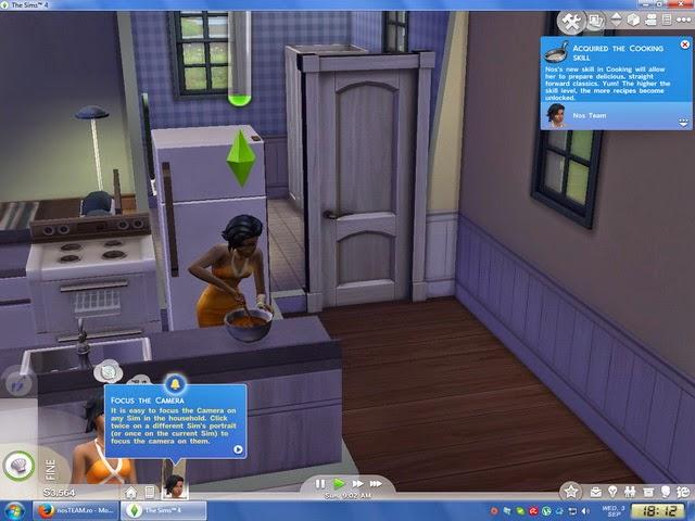 3dmgame the Sims 4 Cra