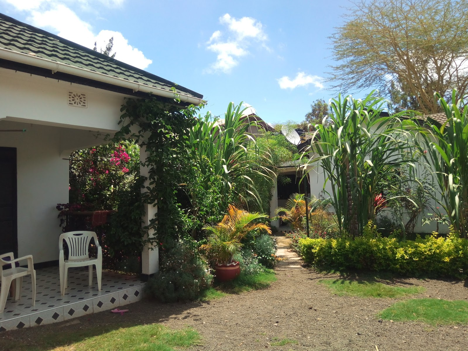 Rent house in Tanzania Arusha rent houses, Houses for sale,vacation ...