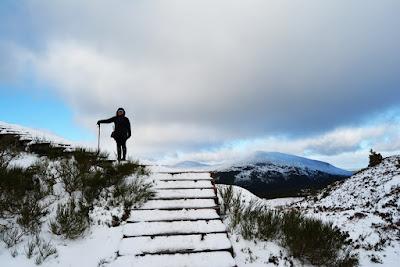 Parque Nacional Cairngorm en Escocia: entra en contacto con la naturaleza