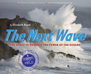 Review of The Next Wave by Elizabeth Rusch