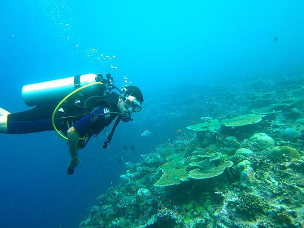 Que hacer en las islas Gili buceo