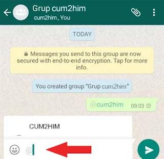 Cara Menandai Teman di Whatsapp Tanpa No Hp (Trik Mention)