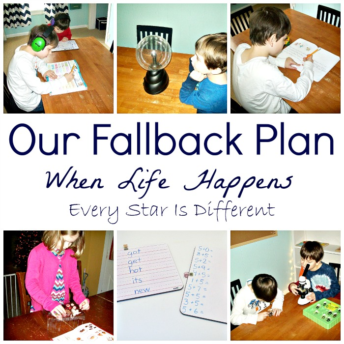 Our Fallback Plan