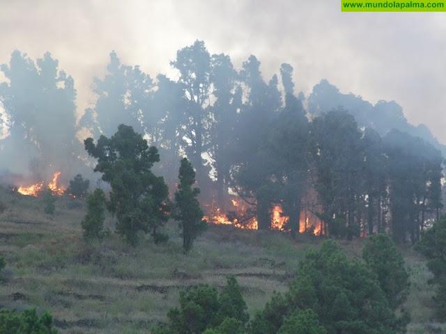 El Gobierno de Canarias mantiene la situación de Alerta máxima por Riesgo de Incendios Forestales