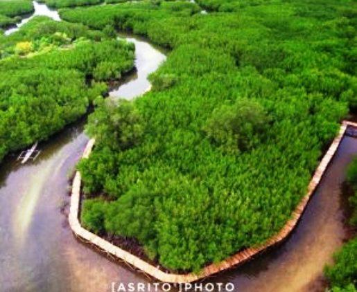 Bontolebang, Unggulkan Hutan Mangrove, Diving ,Dan ,Wisata Keramba