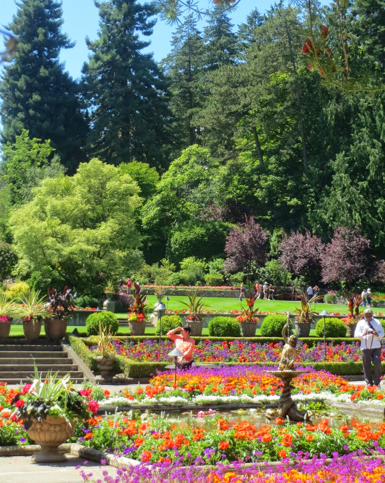 Quilting on main street friday find victoria bc - Butchart gardens tour from victoria ...