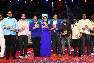 Aakatayi Audio Launch Stills  0024.jpg