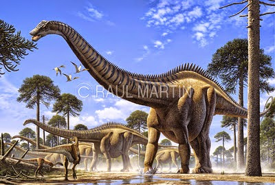 Seismosaurus hallorum