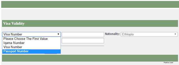 Check Visa Validity Using Passport Number in KSA
