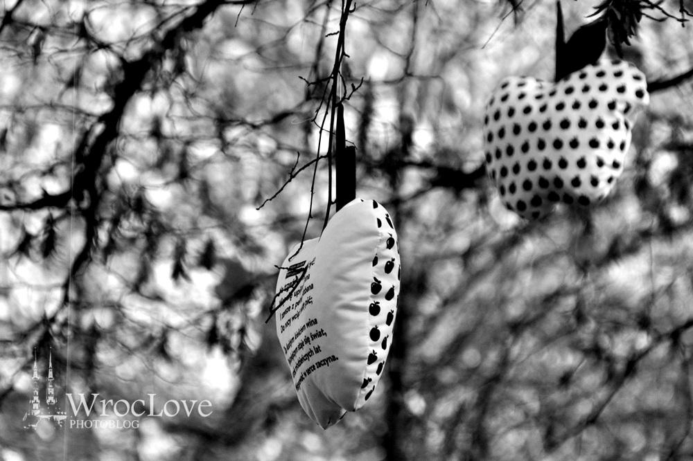 WrocLovePhoto