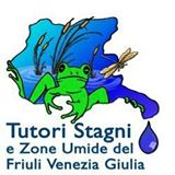 http://www.tutoristagni.it/