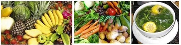 Zat Makanan untuk Kesehatan