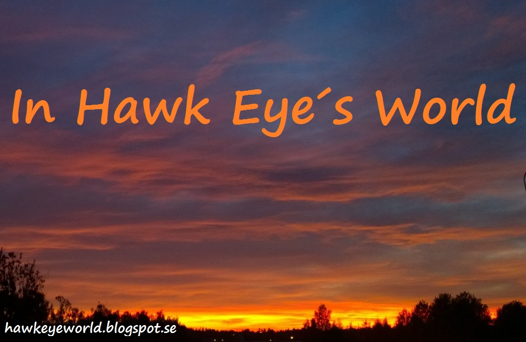 In Hawk Eye´s World