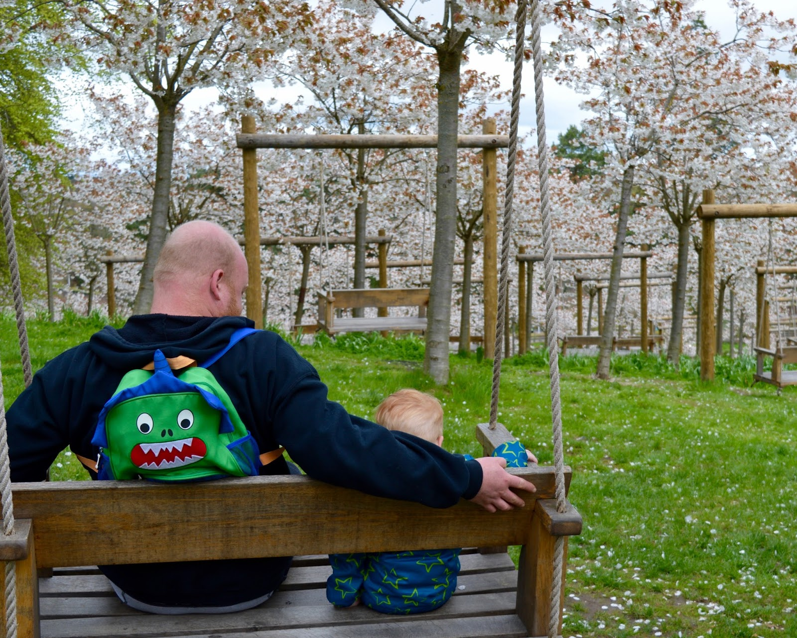 The Cherry Blossom Orchard at The Alnwick Garden  - garden swing