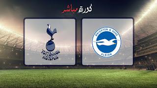 مشاهدة مباراة توتنهام وبرايتون بث مباشر 23-04-2019 الدوري الانجليزي