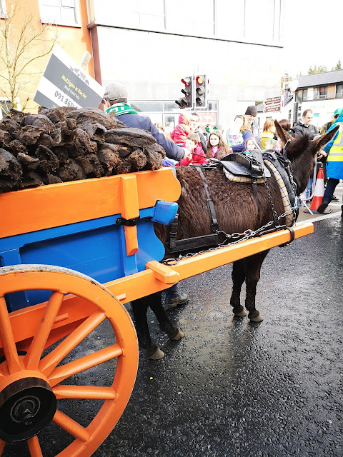 donkey at the parade