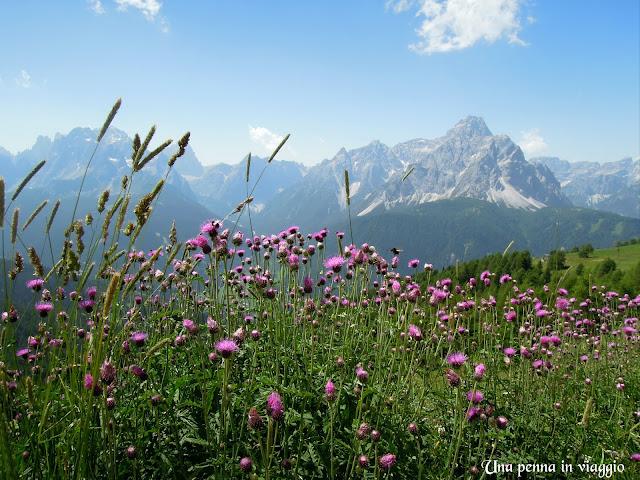 foto montagna dolomiti estate