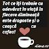 Superstiţii despre cafea