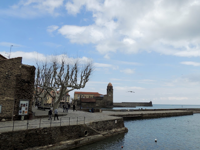 collioure coast, france, south of france