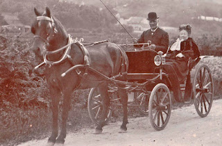 Mr & Mrs Edward Wolllacott in their dogcart