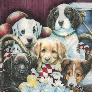 Serviette papier 5 chiens 33 cm x 33 cm 2 plis pour décoration.