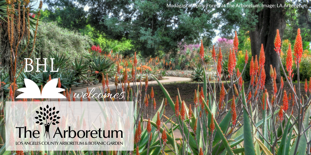 This Quarter, The Biodiversity Heritage Library Was Pleased To Welcome The  Arboretum Library At The Los Angeles County Arboretum And Botanic Garden As  Its ...