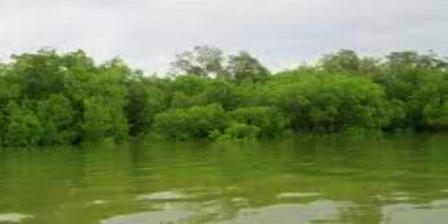 Danau Tahai'i tempat wisata pangkaraya