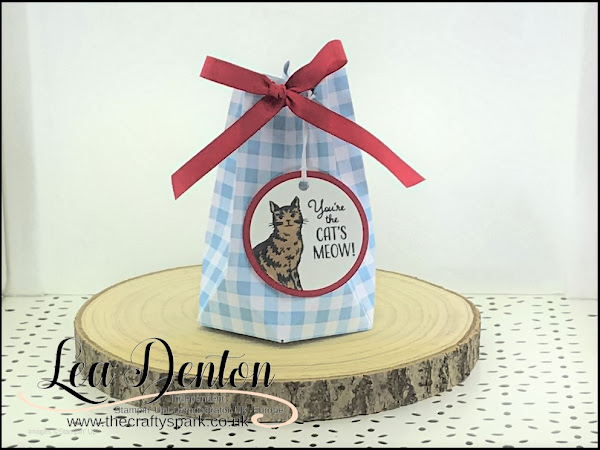 Pretty Gingham Gala Faceted Gift Bag with the Gift Bag Punch Board | Video Tutorial