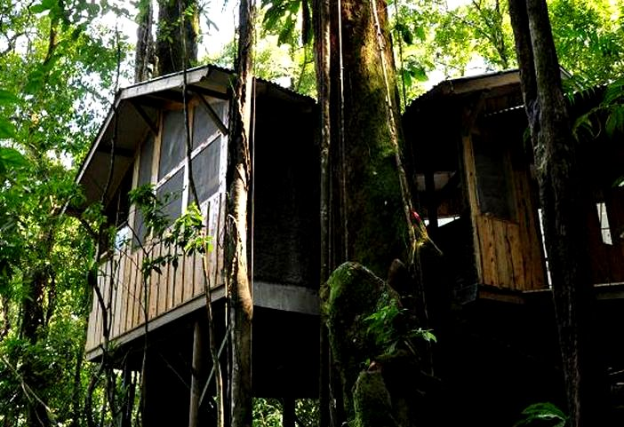 Plane Tree House Costa Rica  47 Useful Gift Ideas for Carry